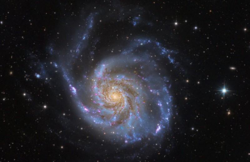 Что такое коллективная астрофотография: десятки фотографов, сотни часов экспозиции и космическая красота