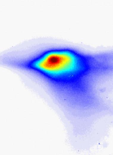 Плазменный ускоритель использовали в лазере на свободных электронах