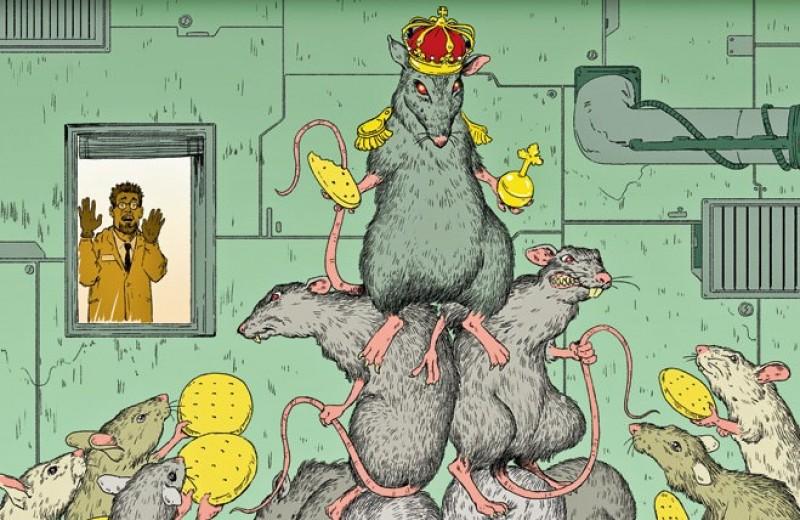 9 экспериментов над крысами, которые помогли понять много нового про людей