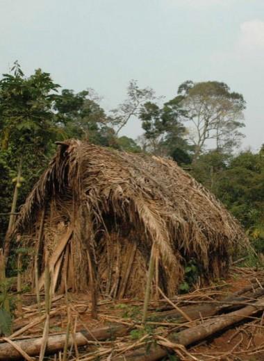 Последний представитель неизвестного племени Амазонии: впервые на видео