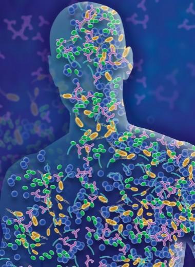Наш внутренний мир: чем так важна микробиота