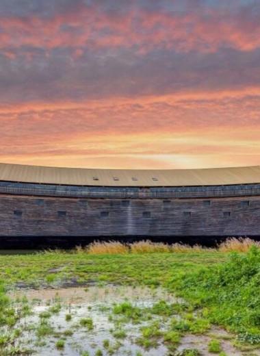 Создатель нового «Ноева ковчега» хочет отправить его в Израиль