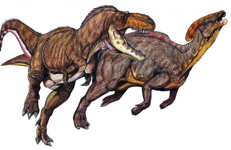 Динозавры могли охотиться стаями: новое исследование