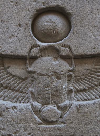 Живые боги: каким животным поклоняются люди?