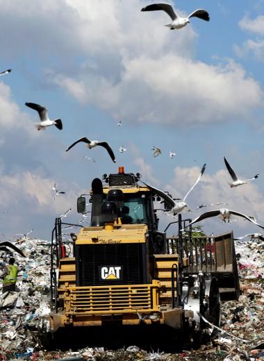 Главные по мусору: переработкой отходов в Подмосковье займутся структура «Ростеха» и сын генпрокурора