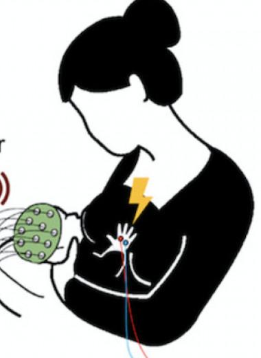 У новорожденных нашли примитивное осознание границ собственного тела