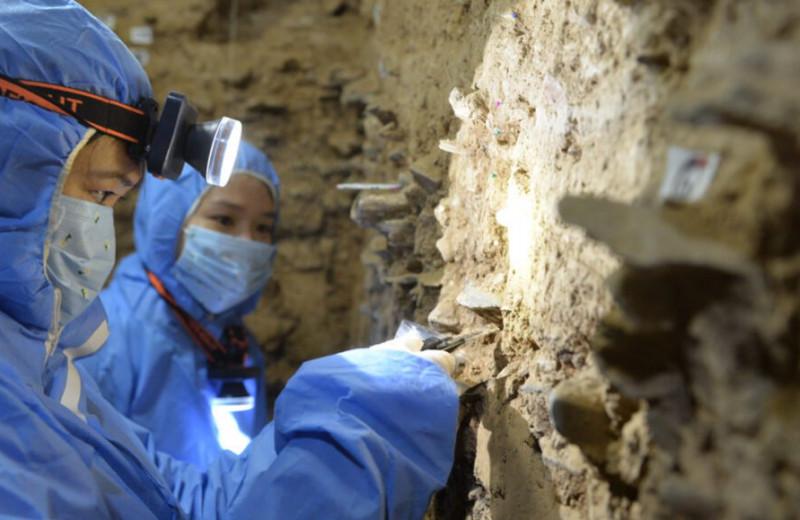 Образец денисовской митохондриальной ДНК впервые нашли за пределами Сибири