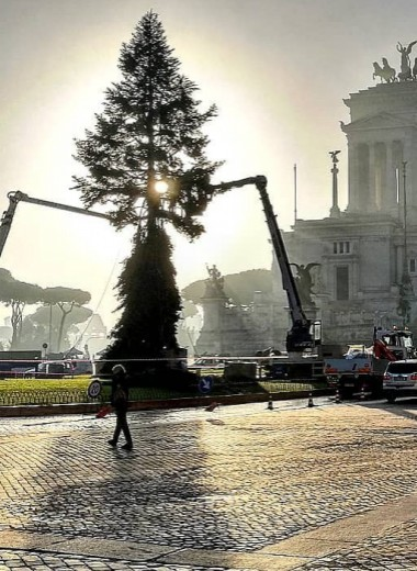 Риму снова не повезло с рождественской елкой