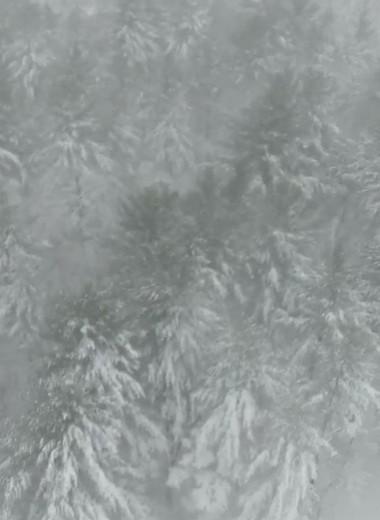 Снежная буря глазами дрона: видео