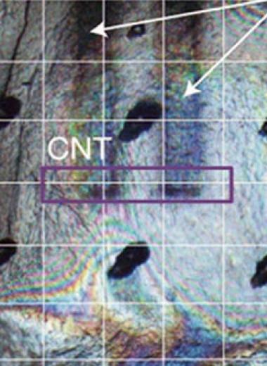 Химики напечатали перерабатываемый транзистор на бумажной подложке