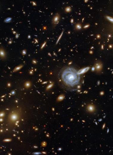 «Галактический зверинец»: новое фото от «Хаббла»