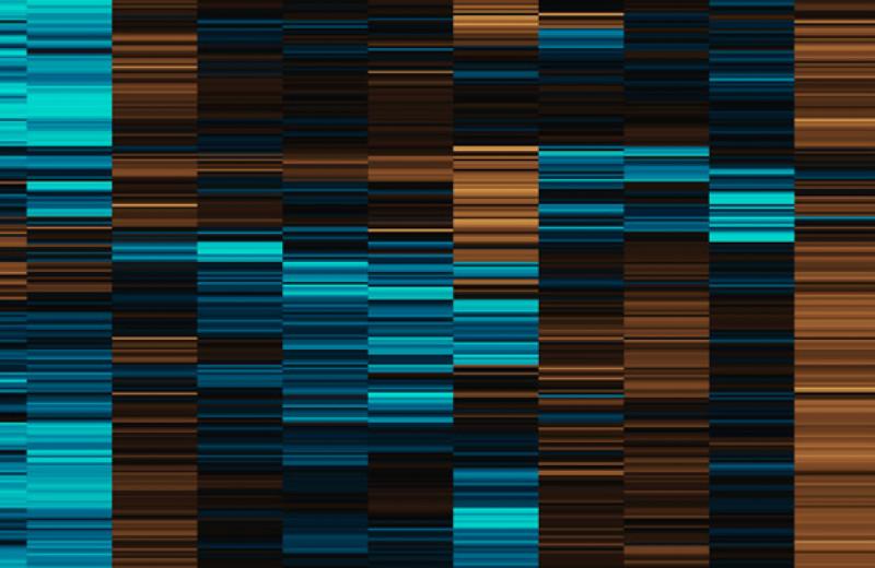Найдены связанные с возрастом наступления менопаузы генетические варианты