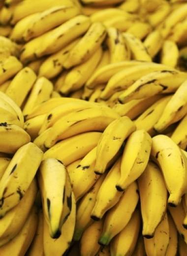 Бананы, песок и пчёлы: 10 ресурсов на грани исчезновения