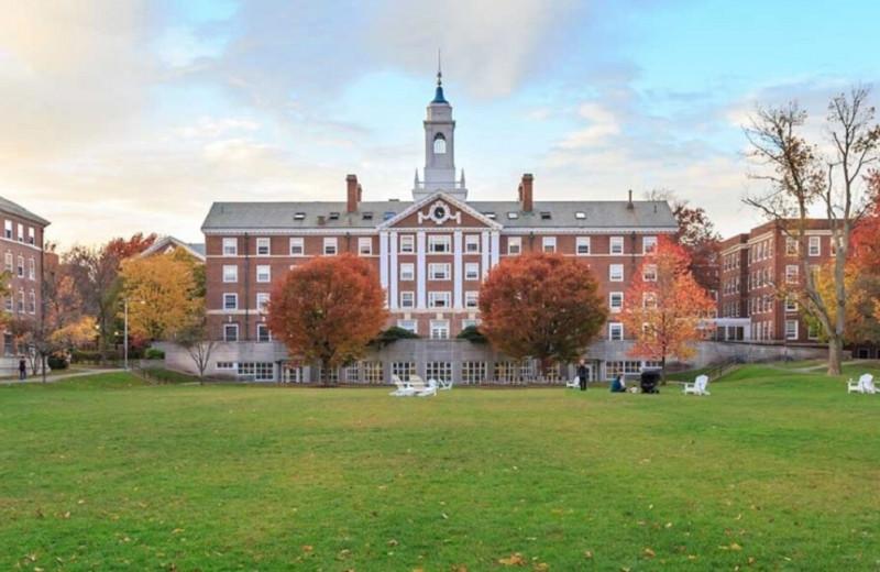 Акции, стартапы, недвижимость: куда инвестируют Гарвард, Йель, Стэнфорд и другие зарубежные университеты
