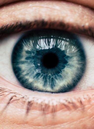 Ученые установили, что интеллект зависит от размера зрачка