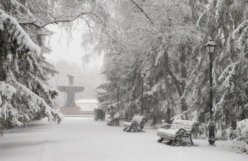 Россию засыпает снегом: фото и видео