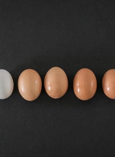 Белковый голод: как нехватка одного элемента питания заставляет нас переедать
