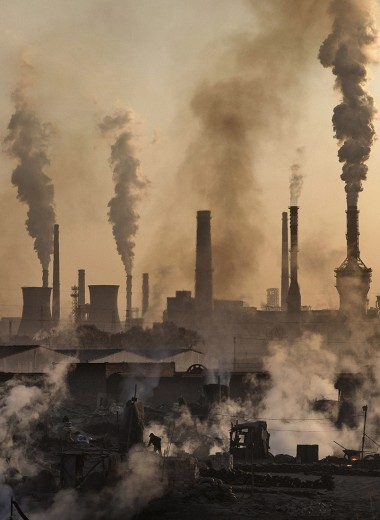 Бизнес с экологическим лицом: ответственность или маркетинговый ход