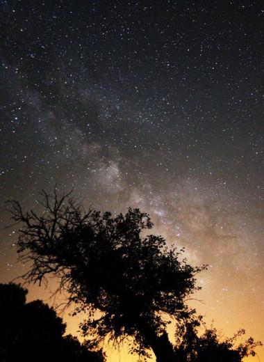 Спутники и космический мусор могли повысить яркость ночного неба на 10%