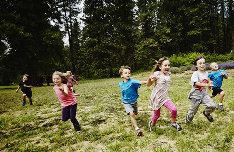 Детский лагерь: научиться «жить в стае»