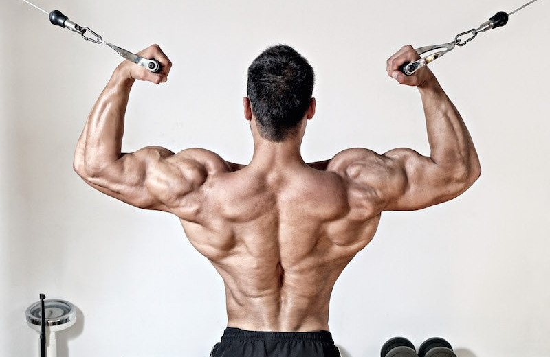 «Дизайн тела говорит ожизненной стратегии»: зачем нужна широкая спина