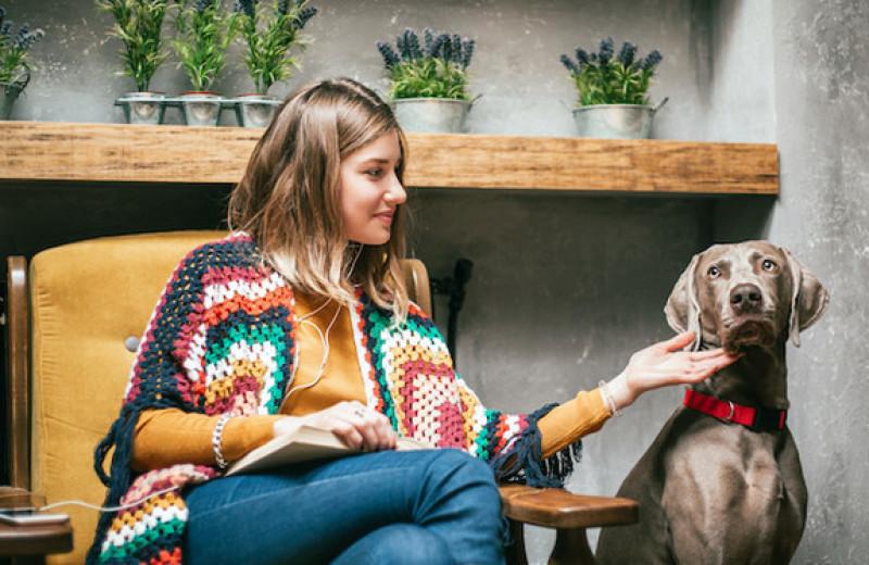 «Располагайтесь поудобнее»: как быстро вернуть себе уверенность