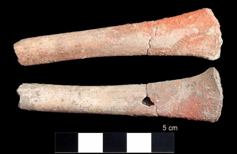 Киноварь приглянулась древним жителям Иберии в эпоху энеолита