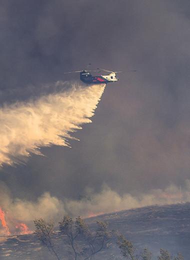 Кто зарабатывает на лесных пожарах с помощью вертолетов, спутников и роботов