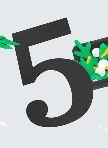 5 ошибок Grow Food