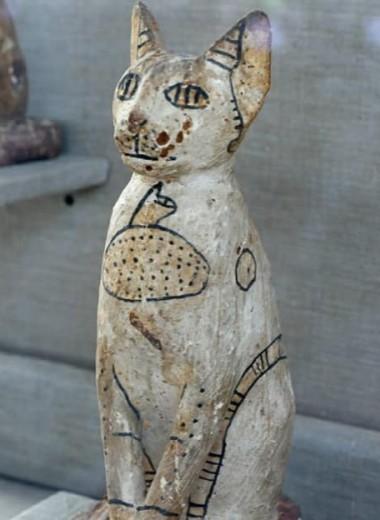 Звериный некрополь: мумии кошек и скарабеев найдены в Египте