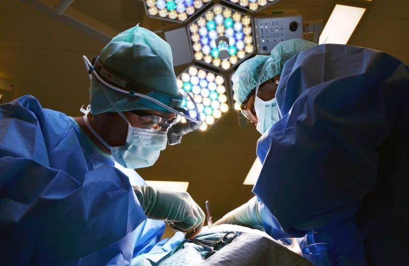 Регенеративная медицина: будущее уже здесь