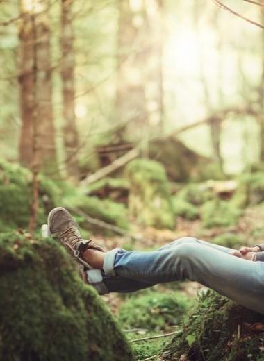 «Я вылечил невроз одиночными походами по лесам»