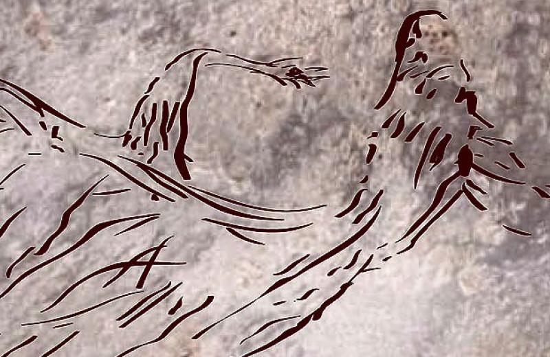 Гнезда ос помогли выявить старейший наскальный рисунок кенгуру