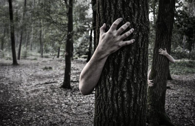 Зомби среди нас: 5 реальных случаев из животного мира