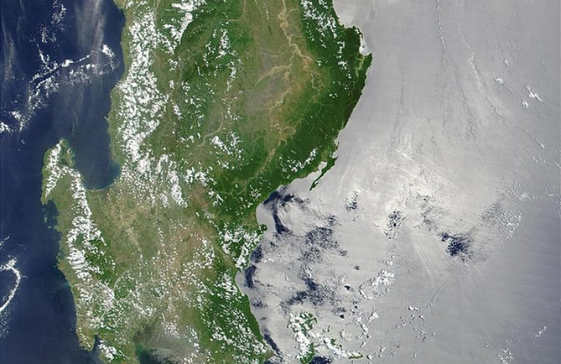 Остров с самой уникальной в мире фауной