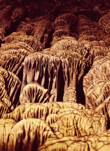 На сколько поднимется уровень моря? Ученые нашли ответ в доисторической пещере