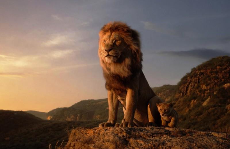 Гляжу втебя, как взеркало: новый «Король Лев» оказался бледной тенью оригинала