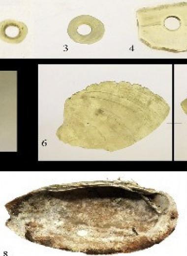 Жители ранненеолитического поселения Ракушечный Яр заготовили впрок мясо и икру осетровых