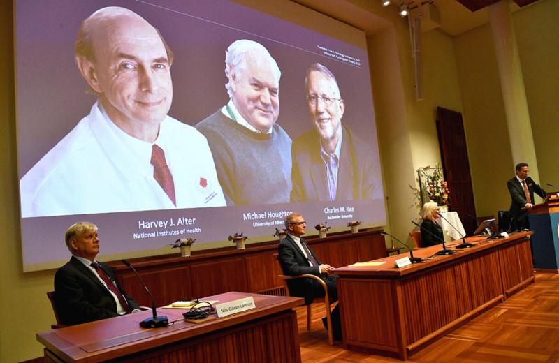 Лечение за 2 месяца и 100% выздоровлений: чем важно открытие вируса гепатита С нобелевскими лауреатами 2020 года