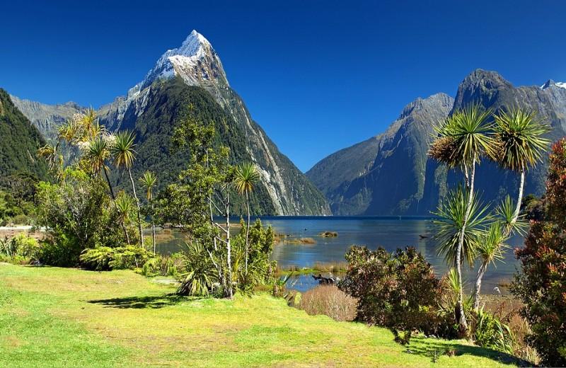 В Австралии, Новой Зеландии и Исландии можно будет спастись в случае глобальной пандемии