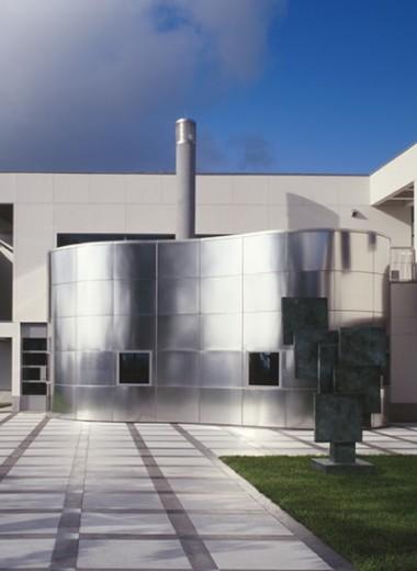 Гигантский колосс, амбары и викторианский особняк Фридмана: самые необычные дома миллиардеров