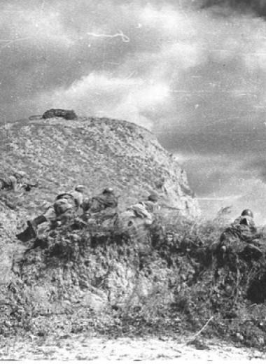 Синявинские высоты: как саперная лопатка стала любимым оружием советской пехоты