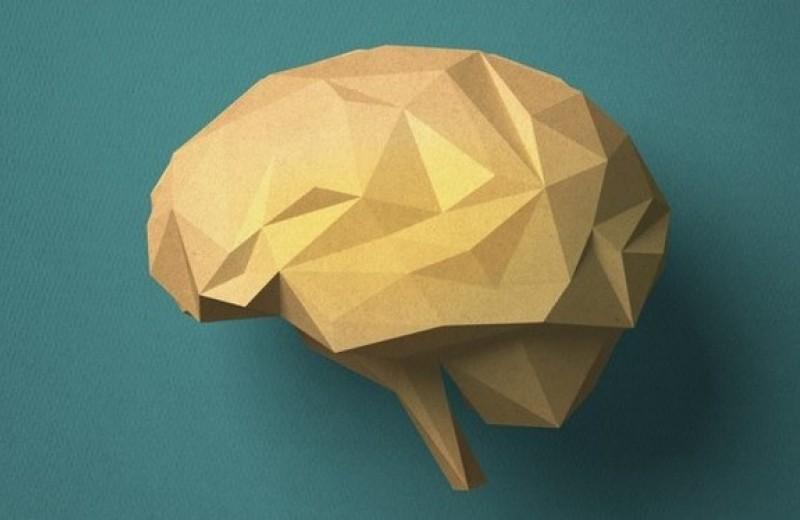 «Чем вы только думаете?»: что будет, если мозг лишится одного полушария