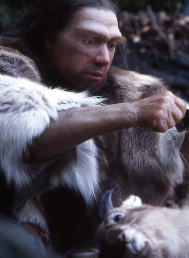 Неандертальцы: приматы и художники