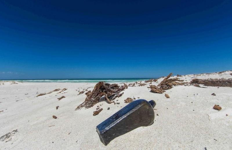 Найдено старейшее в мире послание в бутылке
