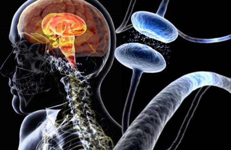 7 заболеваний, которые могут поддаваться лечению каннабиноидами