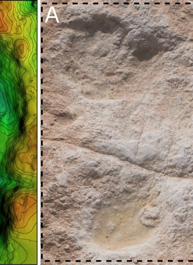 В Саудовской Аравии нашли человеческие следы возрастом 120000 лет