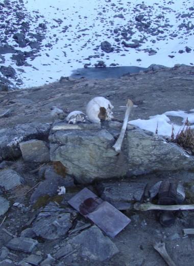 Тайна «озера скелетов» в Гималаях: ученые опровергли все теории его появления