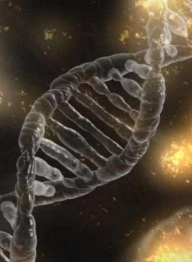 База данных с ДНК каждого жителя: медицинский суперпроект в Дубае