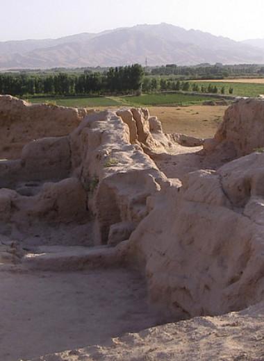 Великий шелковый путь расширил меню согдийских царей